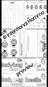 Insects preview