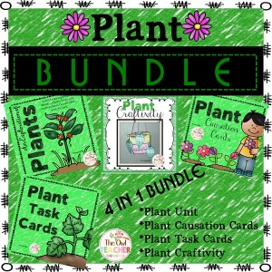 Plantbundle8x8smallertwo